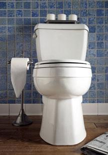Our Sacramento Plumbing Service Clears Toilet Clogs